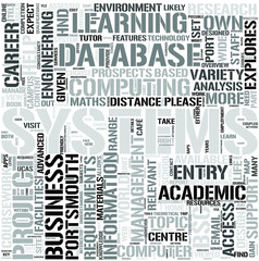 BusinessInformation SystemsDL Word Cloud Concept