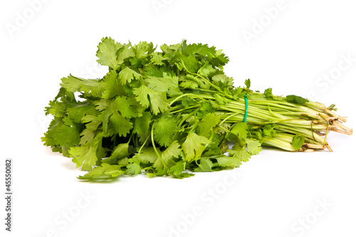 Parsley tied in a bunch with twine isolated