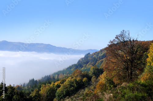 Autumn in Vosges mountains, France