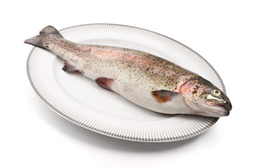 trota iridea - rainbow trout on a plate