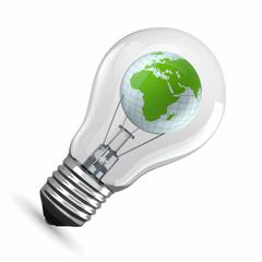 Earth in light bulb. 3d