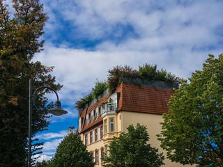 Haus mit Garten auf dem Dach in Wittenberge.