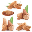 Collection of almond nuts with leaves. Isolated on a white