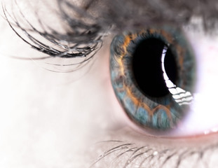 Beautiful Eye of Woman