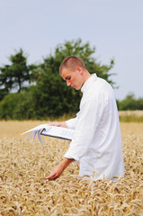 Agriculture scientist in the field checking results