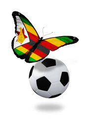 Concept - butterfly with Zimbabwe flag flying near the ball, lik