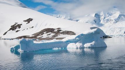 Whale form iceberg in Antarctica