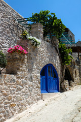 Greek House with Blue Door and Flowers