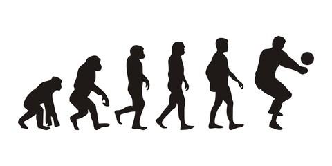 Vom Affen zum Volleyballer (Menschen)