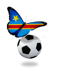 Concept - butterfly with Democratic Republic Congo flag flying n