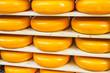 Many Dutch cheeses