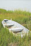Fishing Boat in the Grass