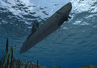 Sottomarino sommergibile