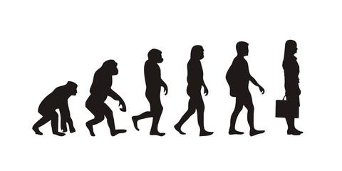Vom Affen zum Geschäftsfrau (Menschen)