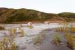 Canoe tent camp at Yukon River in taiga wilderness