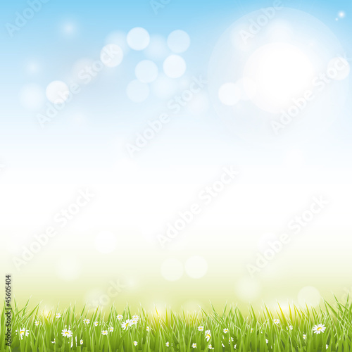 Spring vector background - 45605404