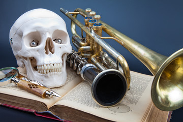 human scull and music instruments