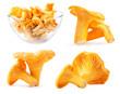 Edible wild mushroom - chanterelle (Cantharellus cibarius)