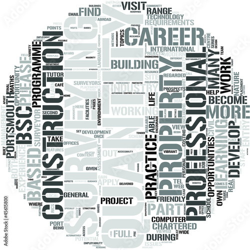 Quantity Surveying Word Cloud Concept