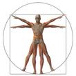 Vitruvian human or man as concept
