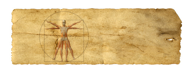 Vitruvian human body drawing on old paper or book background