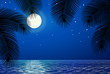 Sea landscape with the moon and palm trees.