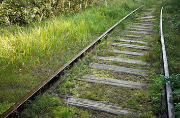 Old abandoned railway track in the forest