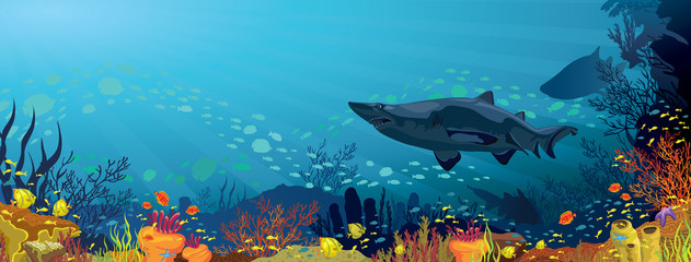 Coral reef with sharks and silhouette of fish