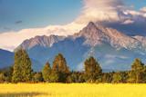 Fototapety Symbol of Slovakia - Mount Krivan