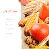Fototapety Autumn still-life with pumpkins and corn