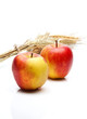 apples and wheat