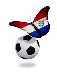 Concept - butterfly with  Paraguay flag flying near the ball, li
