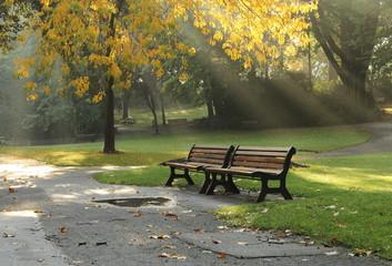 Une paire des bancs dans le parc d'automne