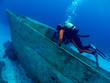 diver explores a wrack