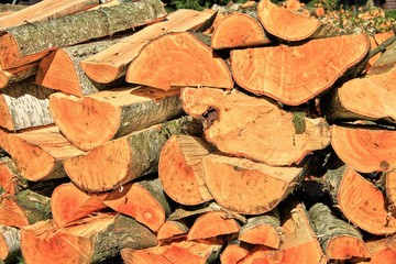 A pile of cut wood