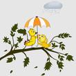 Birds under umbrella