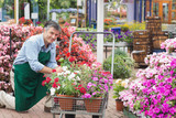 Man putting flowers in trolley