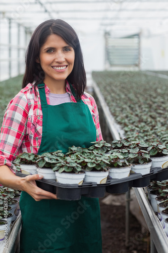 Smiling woman carrying box of plants