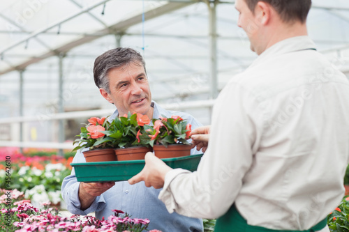 Worker giving the man tray of plants