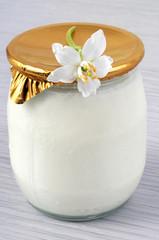 Yaourt bio à la vanille