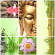 bambou bouddha zen