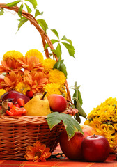 Wicker basket with autumn fruits and flowers