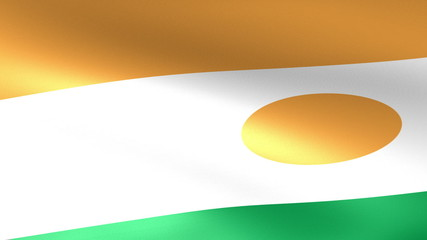 Niger Flag Waving