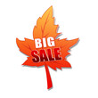 autumn big sale in 3d leaf