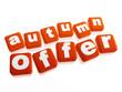 autumn offer - text in orange cubes