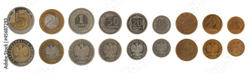 Polish Coins Isolated on White