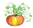 Seasonal vector illustration with pumpkins