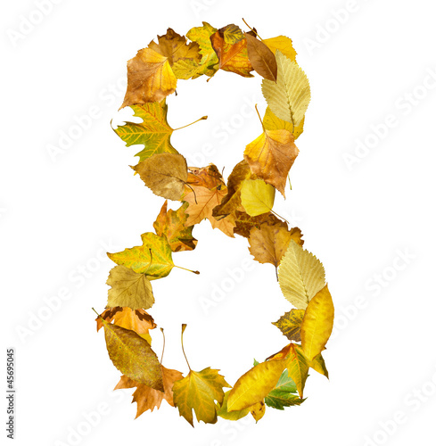Number eight made of autumn leaves.