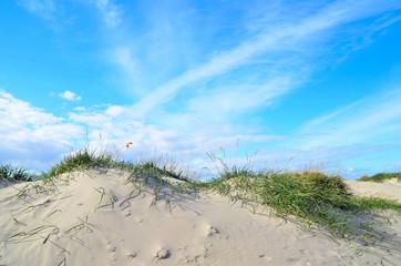 Nordsee Natur Urlaub Meer