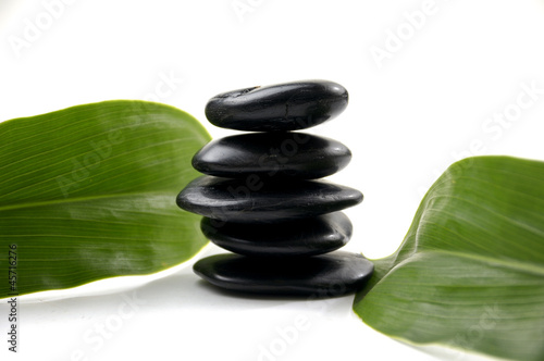 Black stone balancing with green sprout